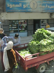 Egyptian lettuce salesman