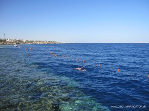 snorkling at Sharm el Sheikh